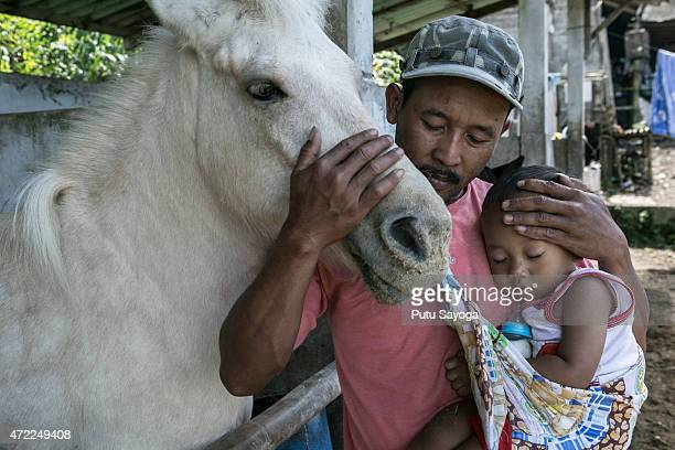 42 years old Ridwan Sururi with his sleeping son and Luna a horse used as mobile library on May 5 2015 in Serang Village Purbalingga Central Java...