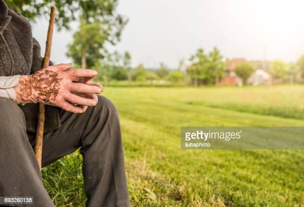 90 years old shepherd hands