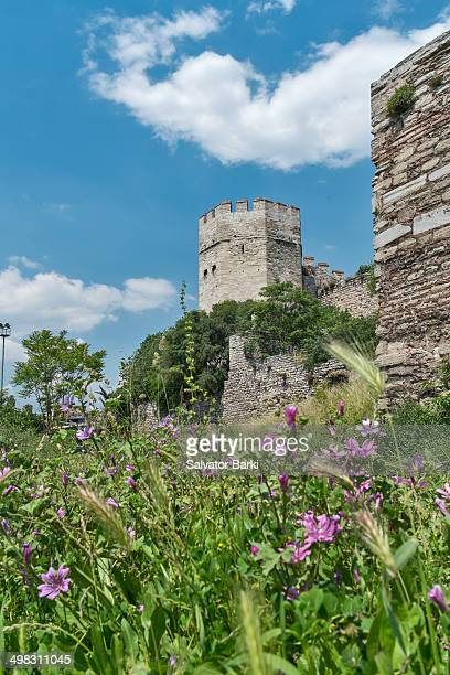 Yedikule Fortress , meaning Fortress of the Seven Towers is located in the Yedikule neighbourhood of Fatih, Istanbul, Turkey. It was built in 1458 by...