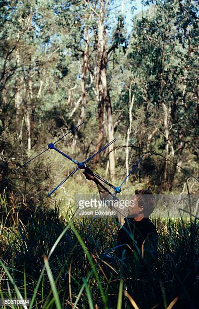 A Researcher uses a radio tracking antenna to track endangered possum.