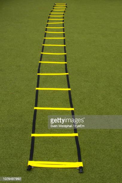 Yellow Agility Ladder On Grass