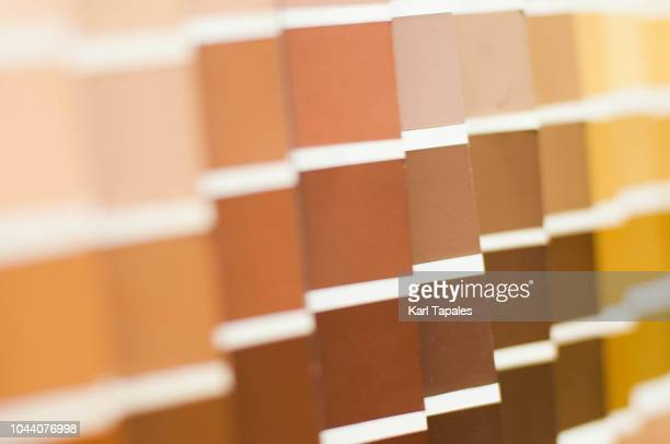 yellow and brown color palette - toned image stock pictures, royalty-free photos & images