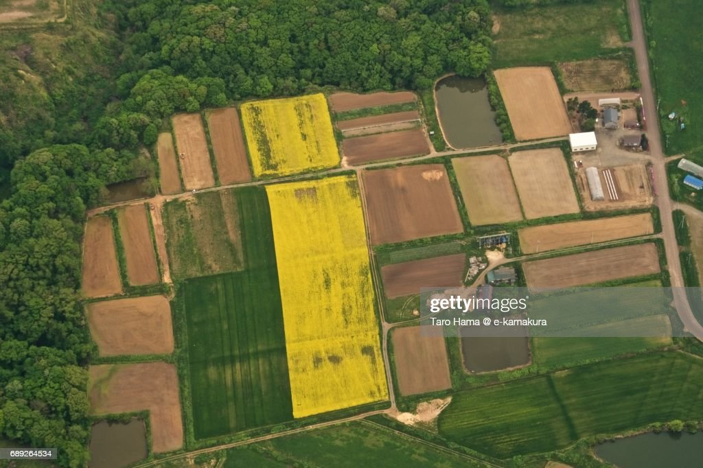 Yellow and green colored fields in Naganuma town in Hokkaido daytime aerial view from airplane : Stock Photo