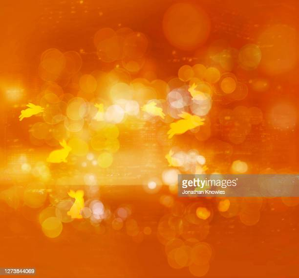 yellow and orange bunny pattern - animal representation stock pictures, royalty-free photos & images