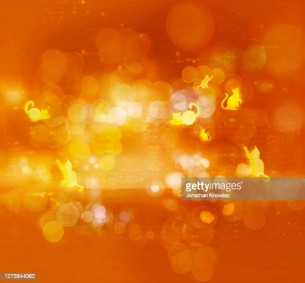 yellow and orange cat pattern - animal representation stock pictures, royalty-free photos & images