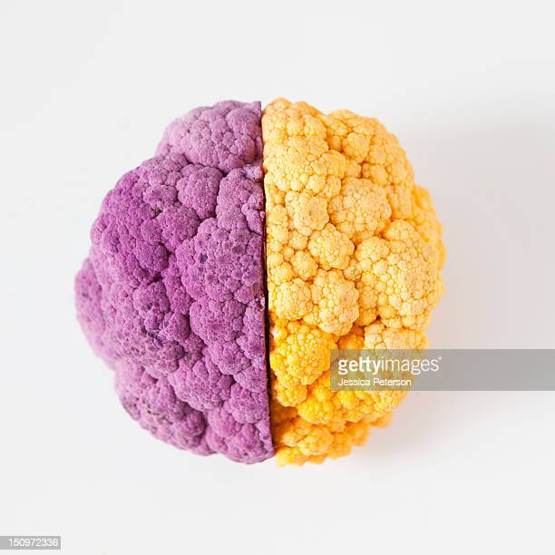 yellow and purple cauliflower, studio shot - two objects stock photos and pictures