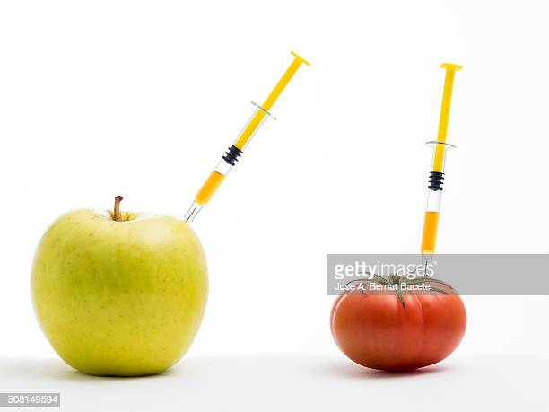 Yellow apple and tomato  with a syringe stuck concept of transgenic foods