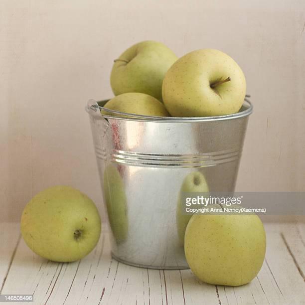 Yellow apples in metal bucket