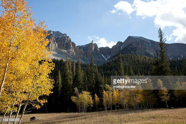 yellow aspen and wheeler peak nevada's great basin national park - great basin stock pictures, royalty-free photos & images
