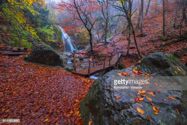 Yellow autumn leaves lie on a wet rock. A wooden footbridge. Waterfall in the background. Autumn forest. Hiking in the mountains.