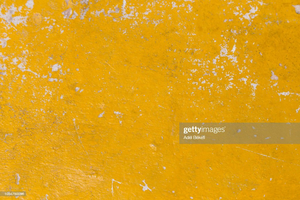 Yellow background : Foto stock