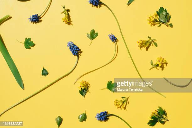 yellow background with small beautiful flowers. - petal stock pictures, royalty-free photos & images