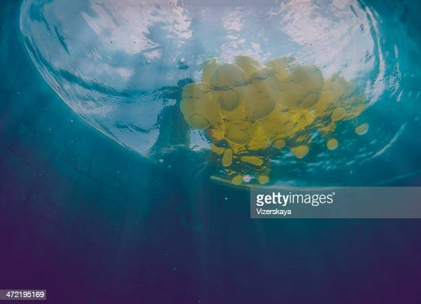 黄色風船水中の眺め