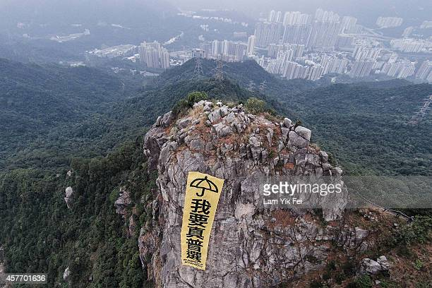 A yellow banner with an umbrella signifying the prodemocracy protest and the chinese text ''I Want True Universal Suffrage'' is placed up the Lion...