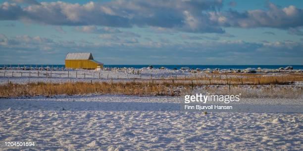 yellow barn at lista at the coast of norway, the north sea in the background - finn bjurvoll bildbanksfoton och bilder