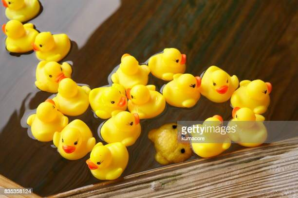 Yellow bear face toy and duck toy float on bathtub