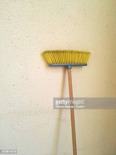Yellow Broom By Wall