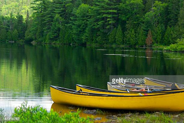 yellow canoes - august stock pictures, royalty-free photos & images