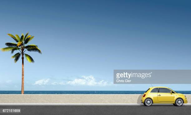 Yellow car near palm tree at ocean
