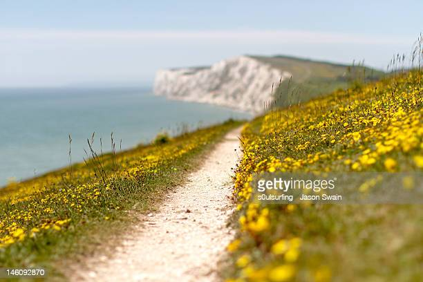 yellow chalk road - s0ulsurfing stock pictures, royalty-free photos & images