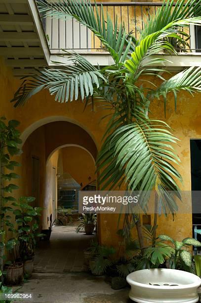 Yellow Colonial Courtyard in Havana