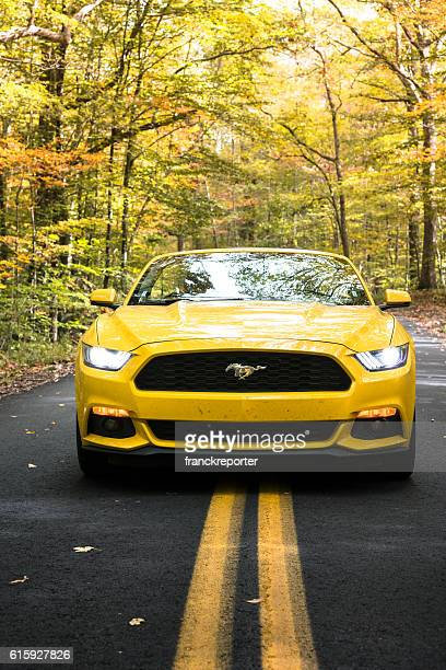 yellow convertible mustang parked on the road - ford mustang stock photos and pictures