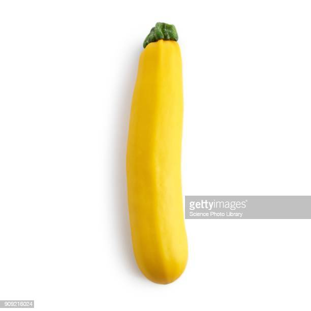 yellow courgette - zucchini stock pictures, royalty-free photos & images