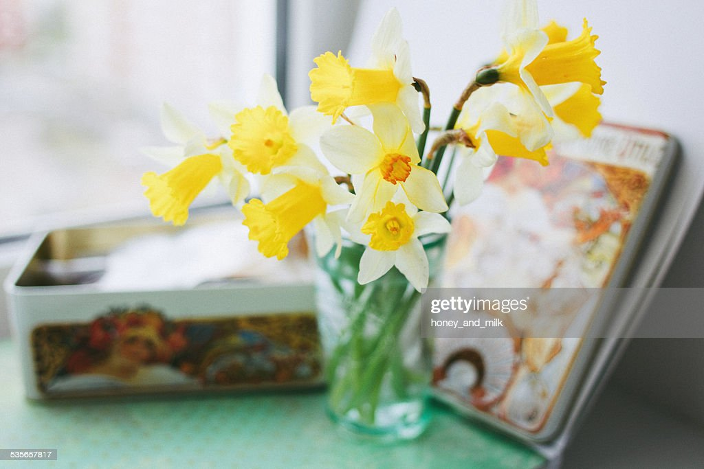 Yellow daffodils in a vase next to a tin : ストックフォト