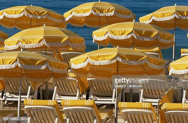 yellow deck chairs and umbrellas on beach - cannes stock pictures, royalty-free photos & images
