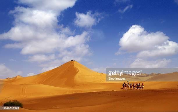 yellow desert - シルクロード ストックフォトと画像