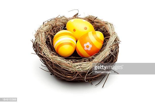 Gelbe Ostern Eier In Vogel Nest