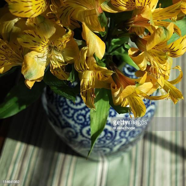 Yellow Flowers, Blue Vase