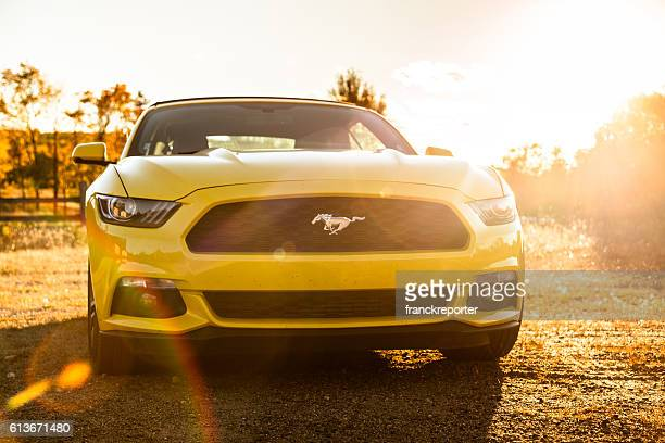 Yellow Ford Mustang GT on the countryside