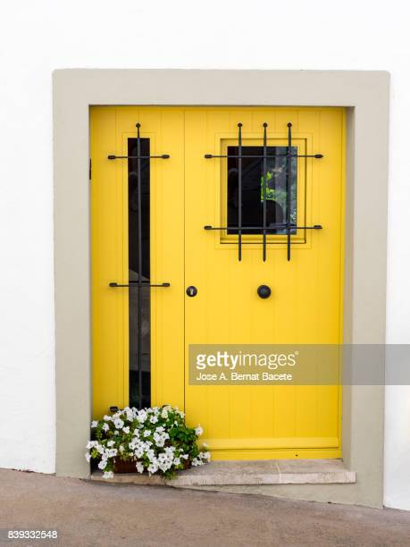 Yellow Front Door modern metallic, with safety gratings and a flower pot