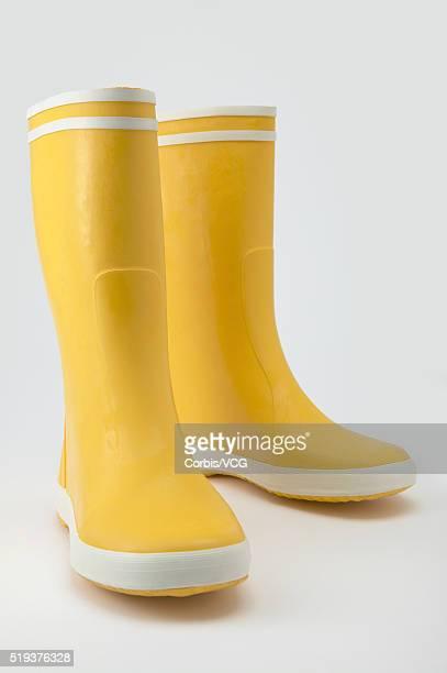 Yellow Galoshes
