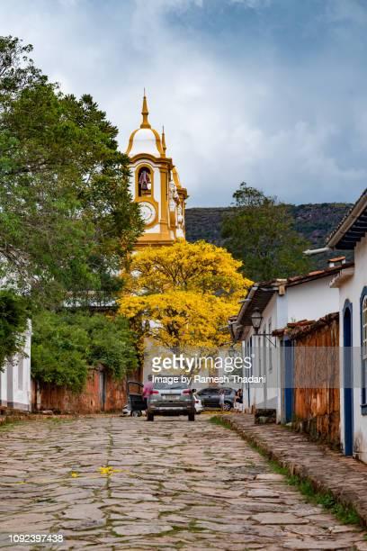 yellow ipe (handroanthus ochraceus) flowering close to the matriz de santo antonio church - handroanthus stock pictures, royalty-free photos & images