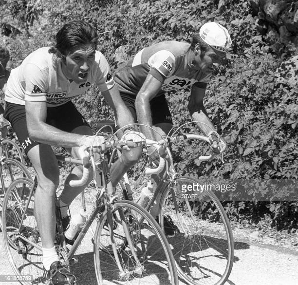 Yellow jersey leader Belgian Eddy Merckx rides uphill with Frenchman Raymond Poulidor during the 10th stage of the Tour de France between...