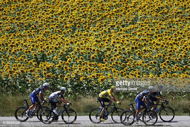 Yellow jersey race leader Chris Froome of Great Britain and Team Sky heads past sunflower fields durng the 2085 km stage fourteen of Le Tour de...