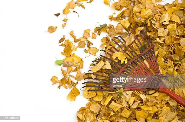 yellow leaves and vintage rake - rake stock pictures, royalty-free photos & images
