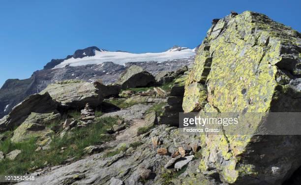 Yellow Lichens On Granite Rock Along Hiking Trail To Basodino Glacier