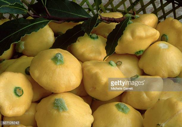 Yellow Patty Pan Squashes