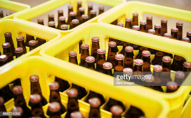 yellow plastic crates with beer bottles in a brewery. - holzkiste stock-fotos und bilder