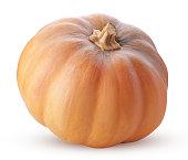 yellow pumpkin vegetable