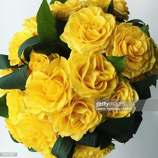 yellow rose bouquet - yellow roses stock photos and pictures
