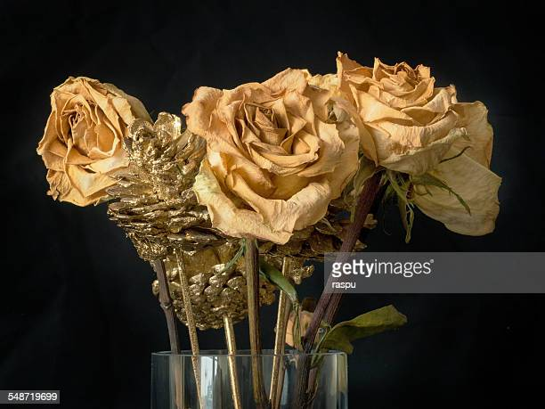 Yellow roses and golden pine cones