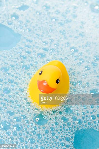 Yellow rubber duck in water