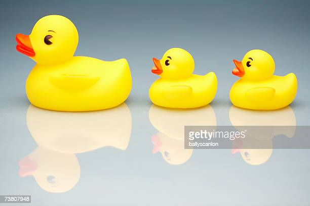Yellow rubber duck leading two smaller rubber ducks, side view