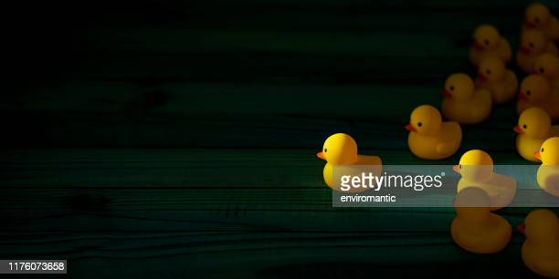 yellow rubber ducks in a group following one leader duck heading towards a shaft of light shining through the darkness, scene set on an old turquoise colored weathered wooden panel background, conceptually representing water. - following stock pictures, royalty-free photos & images