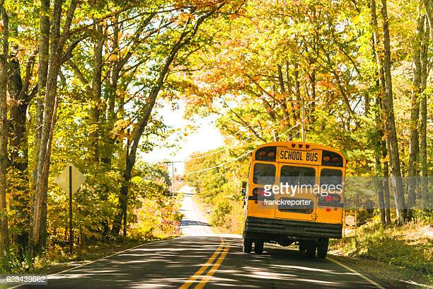 yellow school bus rear view on the road