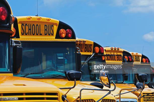 yellow school buses parked diagonally - school bus stock pictures, royalty-free photos & images